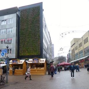 "Projekt ""Green Wall Essen"""