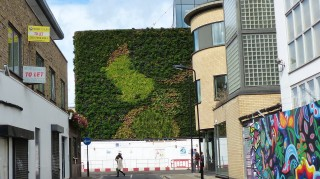 The living wall of MTV offices and studios on Hawley Crescent